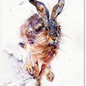 LJH I'll be Hare