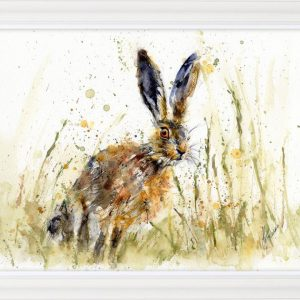 LJH Little Brown Hare